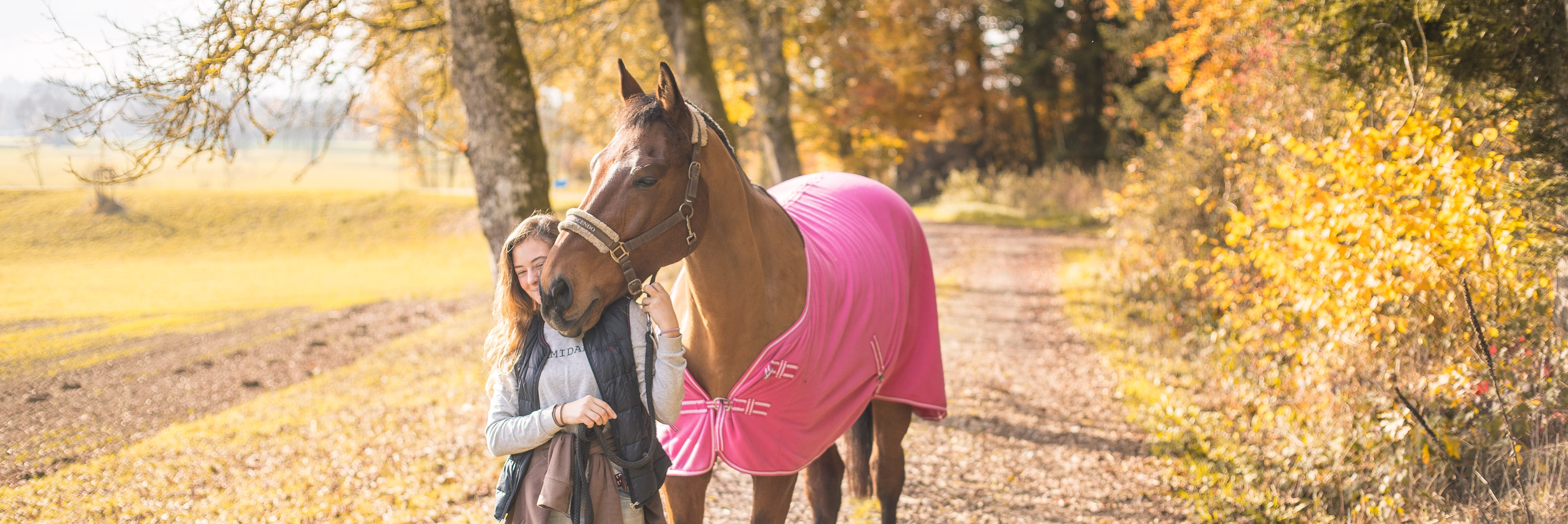 Just another Dressageriders Blog